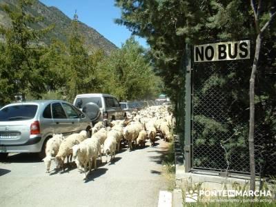Multiaventura - Parque Nacional de Aigüestortes; rutas por la sierra